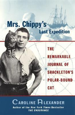 chippy