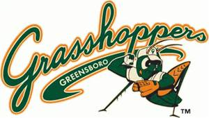 greensboro grass
