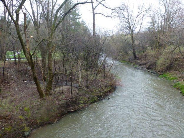 Wilket Creek