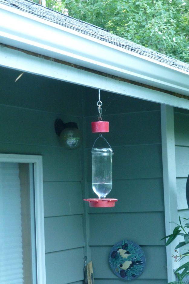 Hummingbird Feeder #1