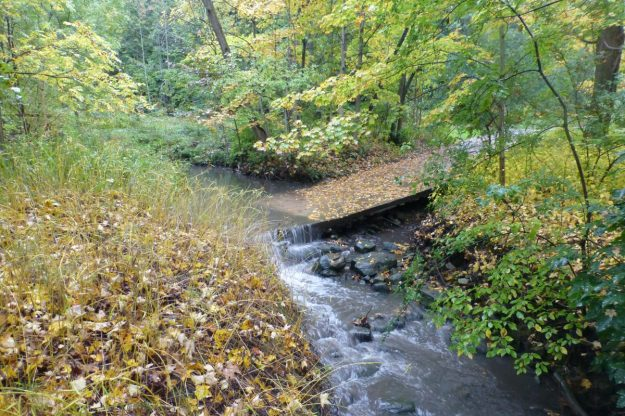 creek-5